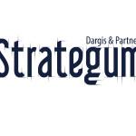 STRATEGUM (dargis ir partneriai).jpg